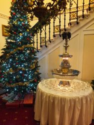 Punch fountain hire at cove castle