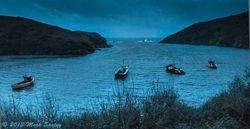 Pembrokeshire #3