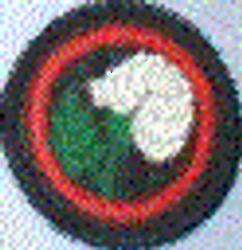 White Rose Patrol Badge
