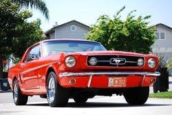 37. 65 Mustang
