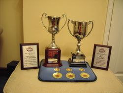 A few of Lisa's 2012 achievements