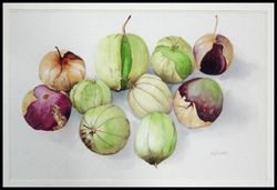 Honorable Mention, Pat Barr (Tomatillos)