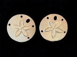 14k yellow gold sand dollar post earrings