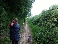 Walking with Amber and Poppy