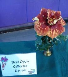 BEST OPEN COLLECTOR DOUBLE - DANCING FIRE - Sam & Lynn Andrews, Fairhope, AL