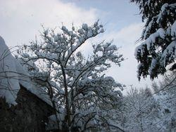 Jan 10, snow 2