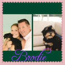 Brodie & her family
