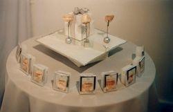 'Identiparts', installation at Biomorphs, 1999
