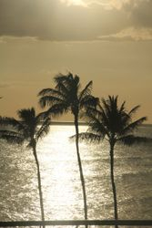 Sunsets on Oahu