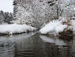 Jan 10, snow 4