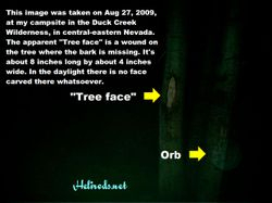 """""""Tree Face"""" and Orb"""