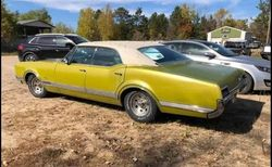 1.67 Olds
