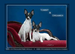 Tommy and Dreamer