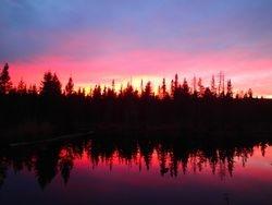 Sunset on old beaver bog