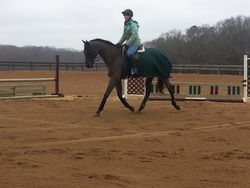 Schooling Reggae for a friend on the flat