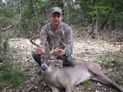 White Tail Buck