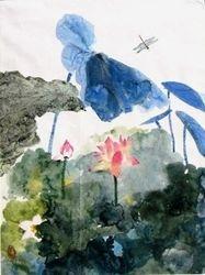 Pond of Lotus Flower