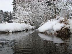 Jan 10, snow 12