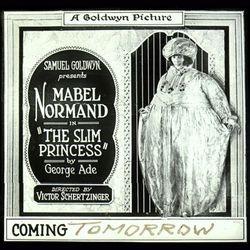 1920 The Slim Princess