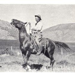 Concho Colonel, sire of Balleymooney