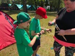 Cubs at camp