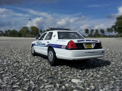 MOUNT DORA POLICE DEPARTMENT, FL