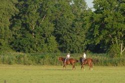Field ride