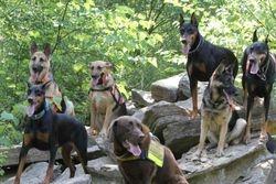 Group Photo 07-02-2011