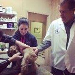 Healthy puppy!