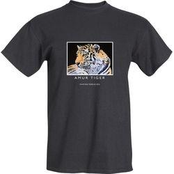 Amasia (Amur tiger)