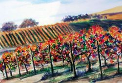 Fall Vineyard, San Luis Obispo County