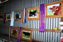 Beef Week Display