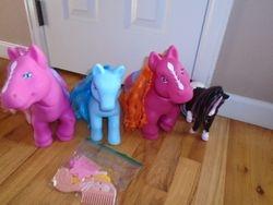 My Little Pony Large Ponies- 4 - $13
