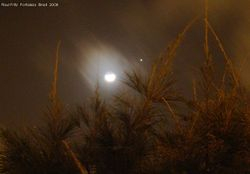 Conjunction of the Moon and Jupiter