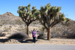 Lynda with Joshua Trees in Joshua Tree National Park CA