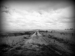 Farm Road 006