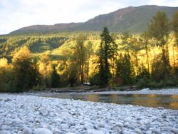 Chilliwack River 10-10-2