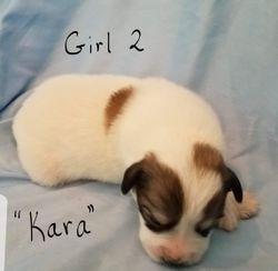 "Girl 2 - ""Kara"""