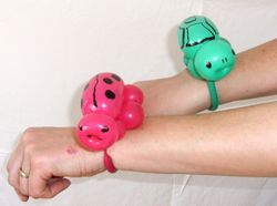 Wrist Turtle or Lady Bug