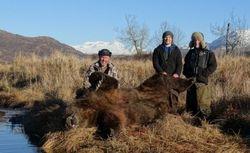 Tim Wise's bear