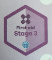 First Aid Stage 3 Skill Builder