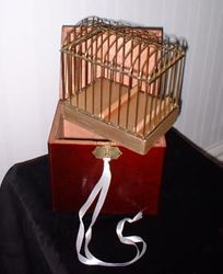 Canary Cage.