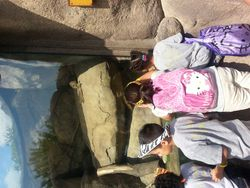 Kayla's School Field Trip May 2013