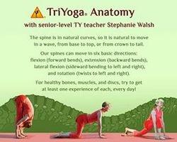 Stretch & Move