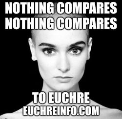 Nothing compares. Nothing compares... to Euchre.