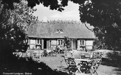 Flickorna Lundgren i Skaret 1941