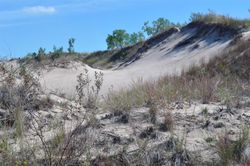 Indiana Dunes National Lakeshore 1