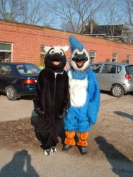 Skunk and Blue Jay Mascot