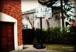 Lifetime Basketball stand