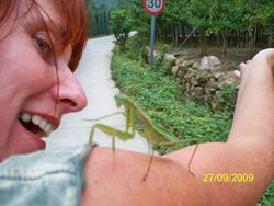 Our Instructor with a Preying Mantis